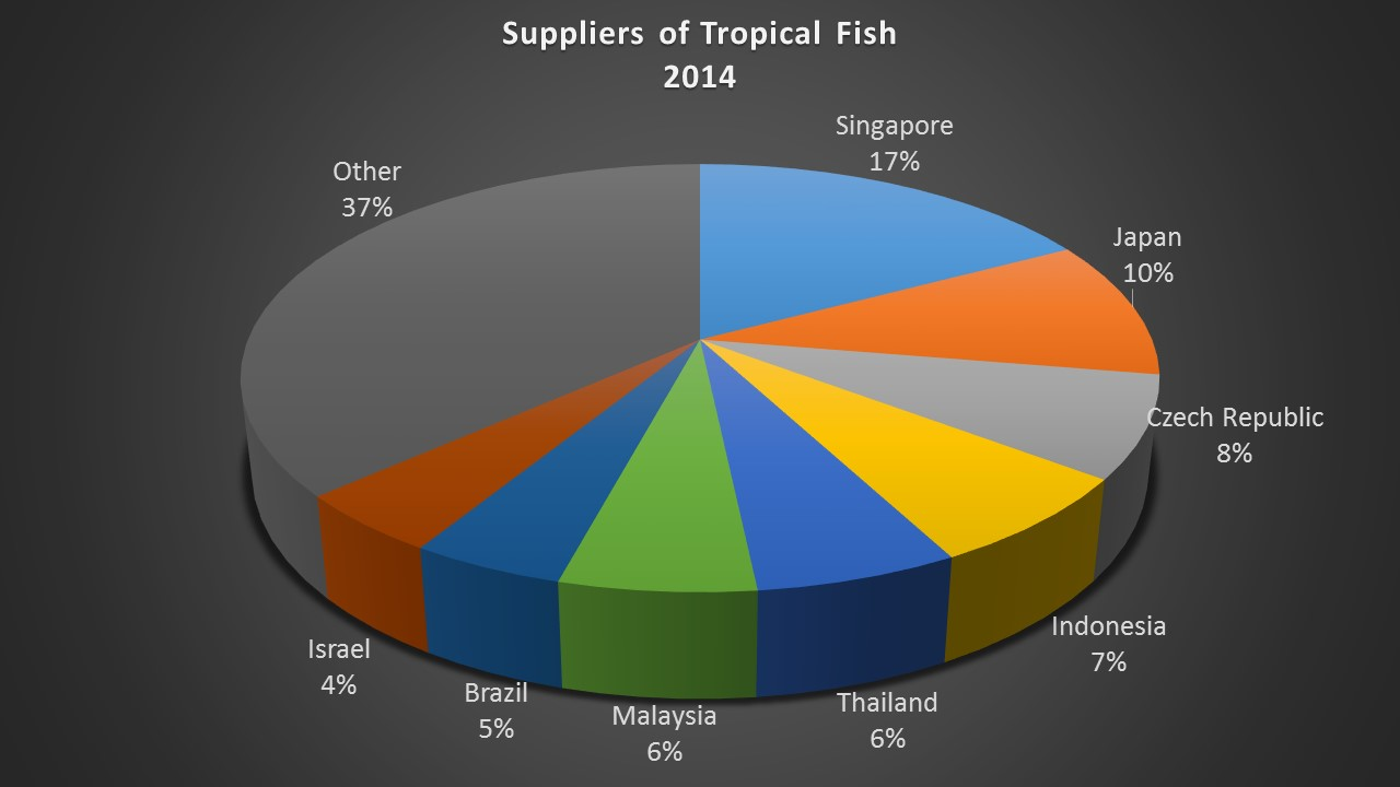 Freshwater aquarium fish exporters - Singapore Is The Single Largest Exporter Of Tropical Fish To The Global Trade Catering To About 17 Of The Total Global Business In Tropical Fish